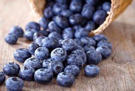 wat doen antioxidanten